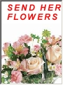 Click here to go to Teleflora Floris 1-800-I-LOVE-YOU